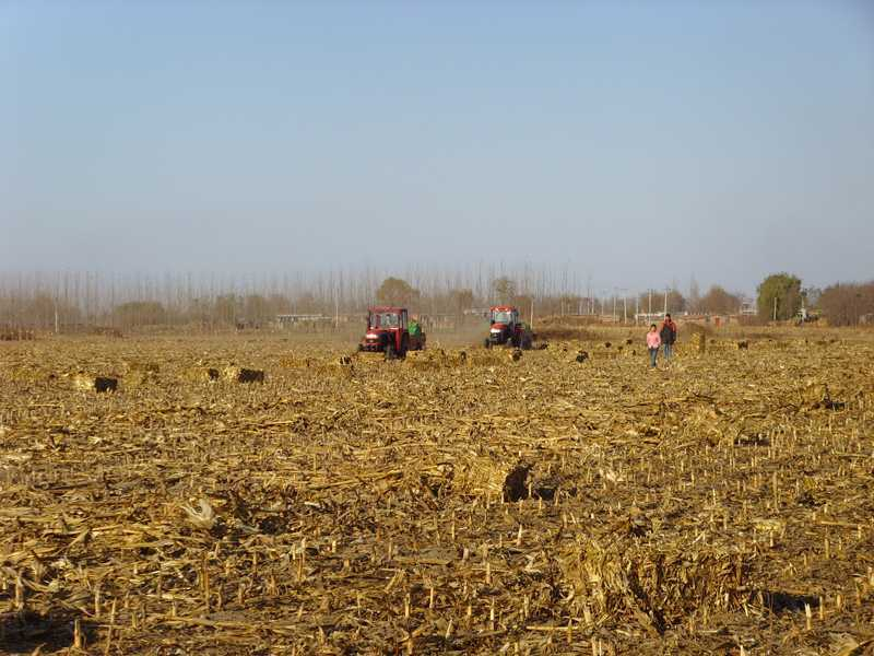 玉米秸秆捡拾机(沈阳方科)