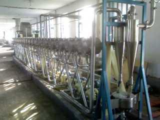 绿豆 豌豆 淀粉加工设备