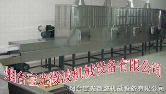微波食品干燥杀菌设备