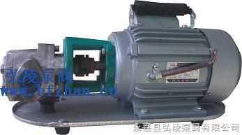 WCB-油泵:WCB手提式不锈钢齿轮油泵
