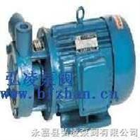 单级漩涡泵