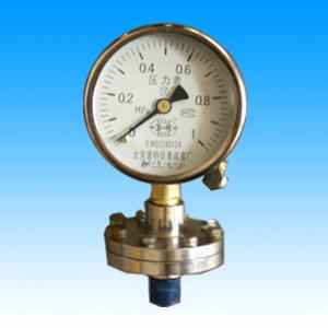 供应隔膜压力表YTP100