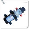 微型隔膜泵制造专家-石家庄普兰迪